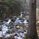 Горные ручьи вдоль тропы