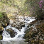Смольные водопады и путь к таинствам У-ШУ, Путешественник