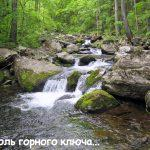 elomovsky2