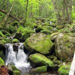 Беневские водопады (Еломовские), Путешественник