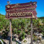 Отдых на море Приморья, Путешественник